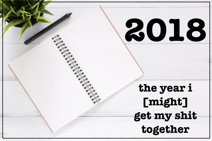 2018: the year i [might] get my shit together