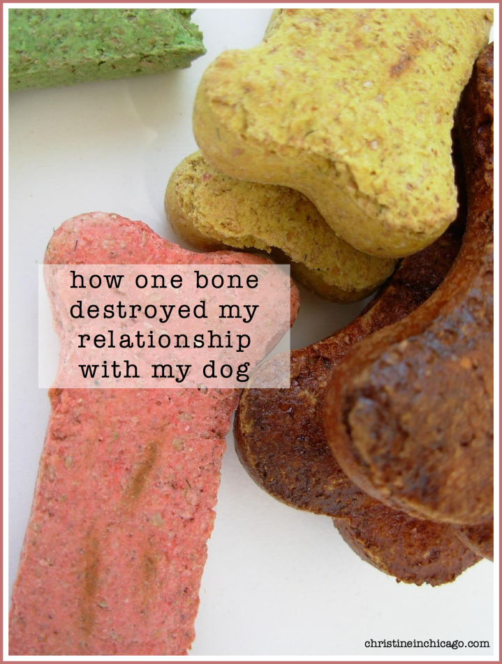 how one bone destroyed my relationship with my dog